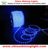 屋外の屋内装飾防水LEDのライト