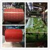Neu gestrichener galvanisierter Stahlring für Gebäude PPGI von Huaye