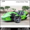 EEC de Trike 250cc de la deriva legal en el camino