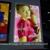 La publicité de Billboard avec DEL Poster Frame