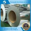 2b/Ba rostfreier Hr/Cr Stahlring-Oberflächenstreifen (201/202/304/316/430/410/409)