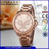 熱い販売ODMの偶然の合金の水晶女性腕時計(Wy-106B)