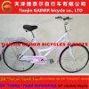 Senhora Bicicleta Estável Qualidade do Gainer 24 de Tianjin  & projeto de Fashioanble