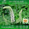Черная выдержка 2.5% Cohosh, выдержка Racemosa Cimicifuga, выдержка Racemosa Actaea