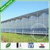 8mm het 10mm Plastic Holle Blad van het Polycarbonaat voor de Serre van de Landbouw