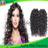 Wholesale Quality Brazilian Human Virgin Remy Hair Extension