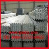 حارّ عميق يغلفن فولاذ [أنغل بر] ([س235جر] [س355ج2] [س355جر])