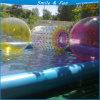 Esfera de Zorb da grama e da água do edifício de equipe para miúdos e adultos