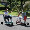 Vespa eléctrica de la rueda del Portable tres del recorrido del ocio para las personas mayores