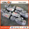 회전하는 바람개비 펌프 또는 소형 진공 펌프 (XD, 2XZ)