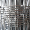 양 또는 Goat/Cattle Fence/Farm Fencing Galvanized Page Wire