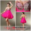 a - Linie /Princess-Isolationsschlauch-Bügel-Knie-Längen-Abschlussball-Kleid mit Seuins und Rüsche (7006)