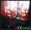 LED 훈장 Bonsai 나무 빛