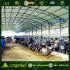 Скотоводческое хозяйство стальной структуры (L-S-053)