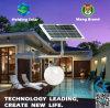 Indicatore luminoso solare economizzatore d'energia brevettato della parete di disegno con impermeabile