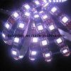 12V-24V los 60LEDs/M SMD5050 refrescan la tira flexible blanca de la luz de 6000k LED