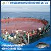 Fábrica de China que flutua a gaiola provisória da piscicultura