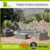 رفاهيّة حديقة قطاعيّ [ويكر] أريكة [رتّن] أثاث لازم خارجيّة