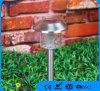 Indicatore luminoso solare del giardino dell'acciaio inossidabile con l'indicatore luminoso bianco del LED