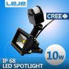 Luci di inondazione di induzione del LED 10W