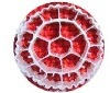 Biocell 매체 Mbbr/생물학 여과 매체