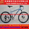 Tianjin Gainer 26  MTB Bicycle Aluminum 21sp