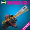 Auto Lamp/HID ESCONDIDOS escolhem o bulbo do feixe (H13-1)