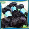 高品質4Aのブラジル人Hair