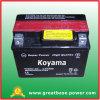 Ytx4l-Bs 3ah 12V Flooded Lead Acid Motor Battery