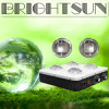 Brightsun BR360 BR540 BR720 COB LED Grow Light voor Greenhouse Planting Medical Plants Wholesales 360W 540W 720W
