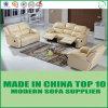 Il sofà elettrico moderno del cuoio genuino ha impostato con il blocco per grafici di legno