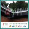 Загородка спайка стены /Decorative спайка стены подъема высокия уровня безопасности анти-