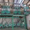 linha de produção do trigo mourisco 10-40t