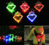 신제품 다채로운 LED 애완 동물 펜던트