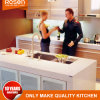 닦는 Quartz Silestone Bench Top 및 Backsplash Stain