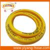 Boyau de jardinage résistant froid de PVC de la pipe Gh2001-03