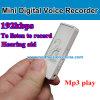 소형 USB 디스크 디지털 음성 기록병
