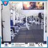 Плитки спортивной площадки резиновый/цветастая резиновый плитка резины /Gym Paver
