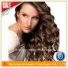 Capelli umani brasiliani della parrucca piena del merletto dei capelli umani di 100%