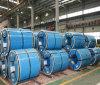 PPGL Prepainted bobinas de acero galvanizado