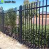 専門家を囲うメルボルンの管状の機密保護の装飾的な鋼鉄塀