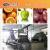De Lijn van de Verwerking van het Vruchtesap van de mango