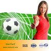 サッカーの草、フットボールの草、SGSの証明書を持つスポーツの草