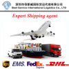 Instruction Express Agent (DHL, UPS, FedEx, TNT) DHL Agent Service
