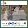 Sculpture en pierre de marbre Polished blanche en lion pour le jardin