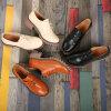 熱い販売の女性の方法革靴の偶然靴(FYS7908-6)