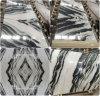 Black VeinのオニックスWhite Marble TilesおよびSlab