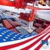 Serviço de logística profissionais para os EUA a partir de China