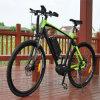 СРЕДНИЙ велосипед города e мотора для человека (RSEB-511)