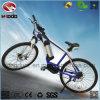 Elektrische Mountain Bicicleta MID Motor MTB Bike voor Sale